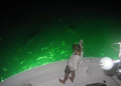 Deep Glow Underwater Lighting 29