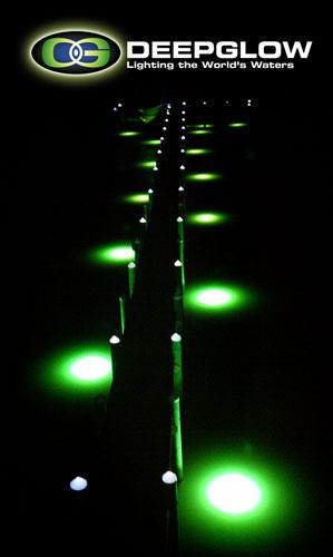 Deep Glow Underwater Lighting 43