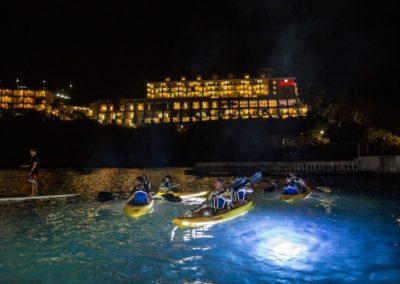 Deep Glow Underwater Lighting 47
