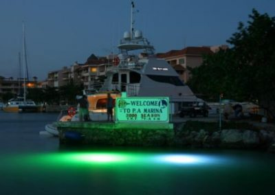 Deep Glow Underwater Lighting 1